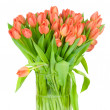 Tulips in the vase against white background — Stock Photo #25007949