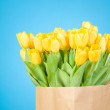 Tulips in paper bag against blue background — Stock Photo #25008235