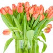 Tulips in the vase against white background — Stock Photo #25008303
