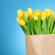 Tulips in paper bag against blue background — Stock Photo #25008599
