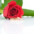 Red roses and two golden wedding rings — Stock Photo #25009899