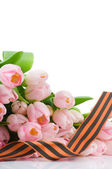 George ribbon and tulips isolated on white background — Stock Photo