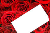 Roses bouquet with greeting card — Stock Photo