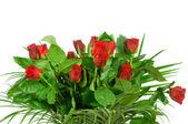 Kytice růže izolovaných na bílém pozadí — Stock fotografie