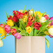 Tulips in paper bag on blue background — Stock Photo