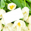 Bouquet of tulips with greeting card isolated on white background — Stock Photo