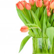 Tulips in the vase against white background — Stock Photo #25011257