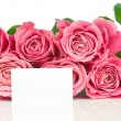 Pink roses and a card isolated on white — Stok fotoğraf
