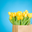 Tulips in paper bag against blue background — Stock Photo #25011553