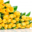 Yellow tulips — Stock Photo #25229367