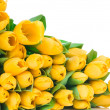 Yellow tulips — Stock Photo #25229857