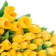 Yellow tulips — Stock Photo #25229963