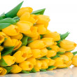Yellow tulips — Stock Photo #25229967