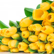 Yellow tulips — Stock Photo #25230143