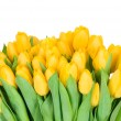 Yellow tulips — Stock Photo #25230763