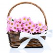 Chrysanthemum flowers in the wicker — Stock Photo