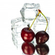 Cherry and ice cubes isolated on white background — Stock Photo