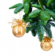 Pine branches and Christmas ornaments isolated on white background — Stock fotografie