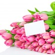 Stock Photo: Bouquet of tulips isolated on white background