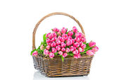Pink tulips in the wicker isolated on white background — Stock Photo