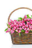 Pink tulips in the wicker — Stock Photo