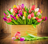 Tulips in the box on wooden background — Stok fotoğraf