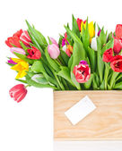 Tulips in the wooden box — Stock Photo