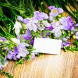 Stock Photo: Freesiflowers with greeting card