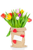 Tulips in the sack on white background — Foto Stock