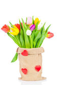 Tulips in the sack on white background — Stockfoto