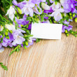 Stock Photo: Bunch of freesiwith greeting card