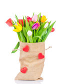 Tulips in the sack on white background — Foto de Stock