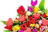 Tulpen auf weißem hintergrund — Stockfoto
