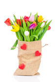 Tulips in the sack on white background — Stock Photo