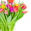 Tulips in the vase — Stock Photo