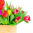 Tulips flowers in box — Stock Photo #41837927