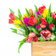 Tulips flowers in box — Stock Photo #41837957