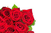 Roses bouquet isolated — Stock Photo