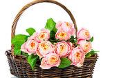 Pink tulips in the basket — Foto de Stock