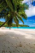 Letní pláž — Stock fotografie