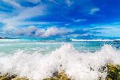 热带海滨. — 图库照片
