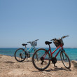 Bicycles — Stockfoto #23194544