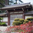 Japanese Tea Garden San Francisco — Stock Photo