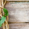 Close view of a vine against rustic wood boards. — Stock Photo #22646291