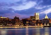 Savannah at Twilight — Stock Photo