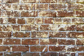 Gritty Brick Wall — Stock Photo