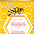 Royalty-Free Stock : Honeycomb and bees