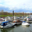 Stock Video: Idyllic marinat Rhine river