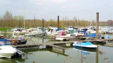 Idyllic marina at Rhine river in Germany — Stock Video
