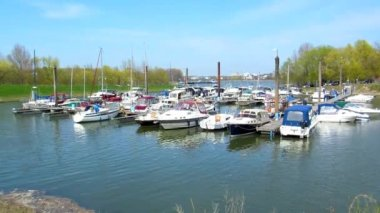 Rhine marina near Cologne — Stock Video